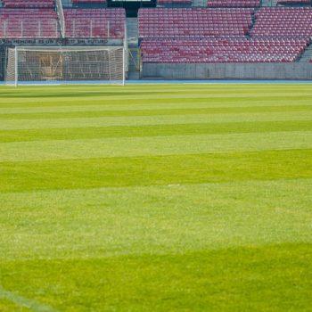 stadium-1525532_960_720
